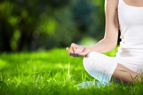 Lakshmi Ayurveda Workshop & Yoga